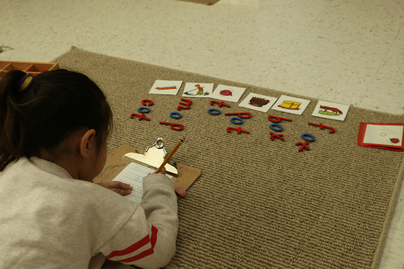 Joyous Montessori - Day Care/Preschool